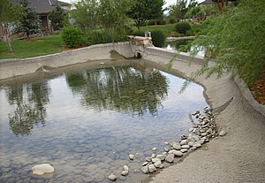water management landscaping services