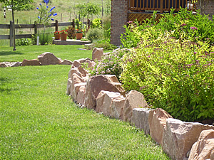 Cox Professional Landscape Services Denver Colorado