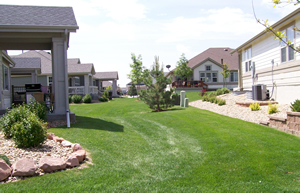 commercial pest and weed control landscaping south of denver co